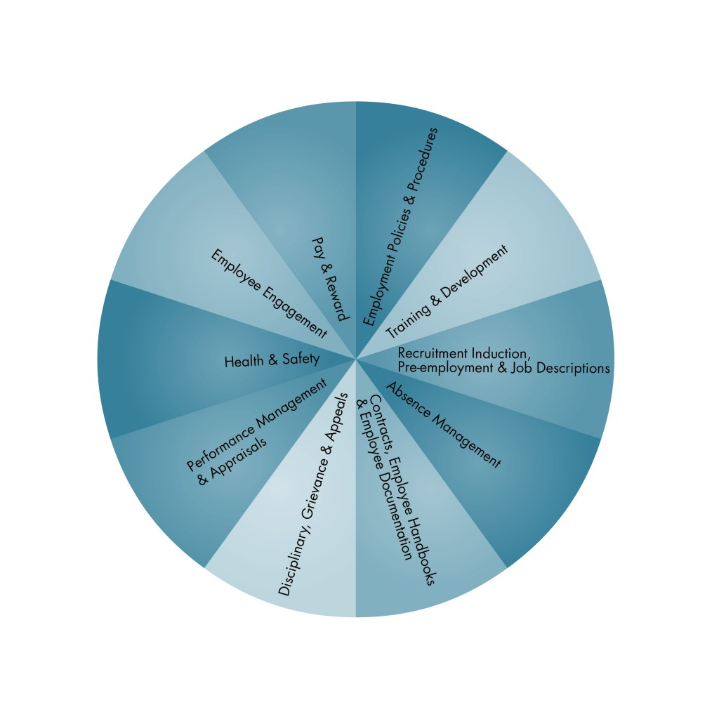 The Black Dog HR Wheel - A key tool in helping us identify where support may be needed.