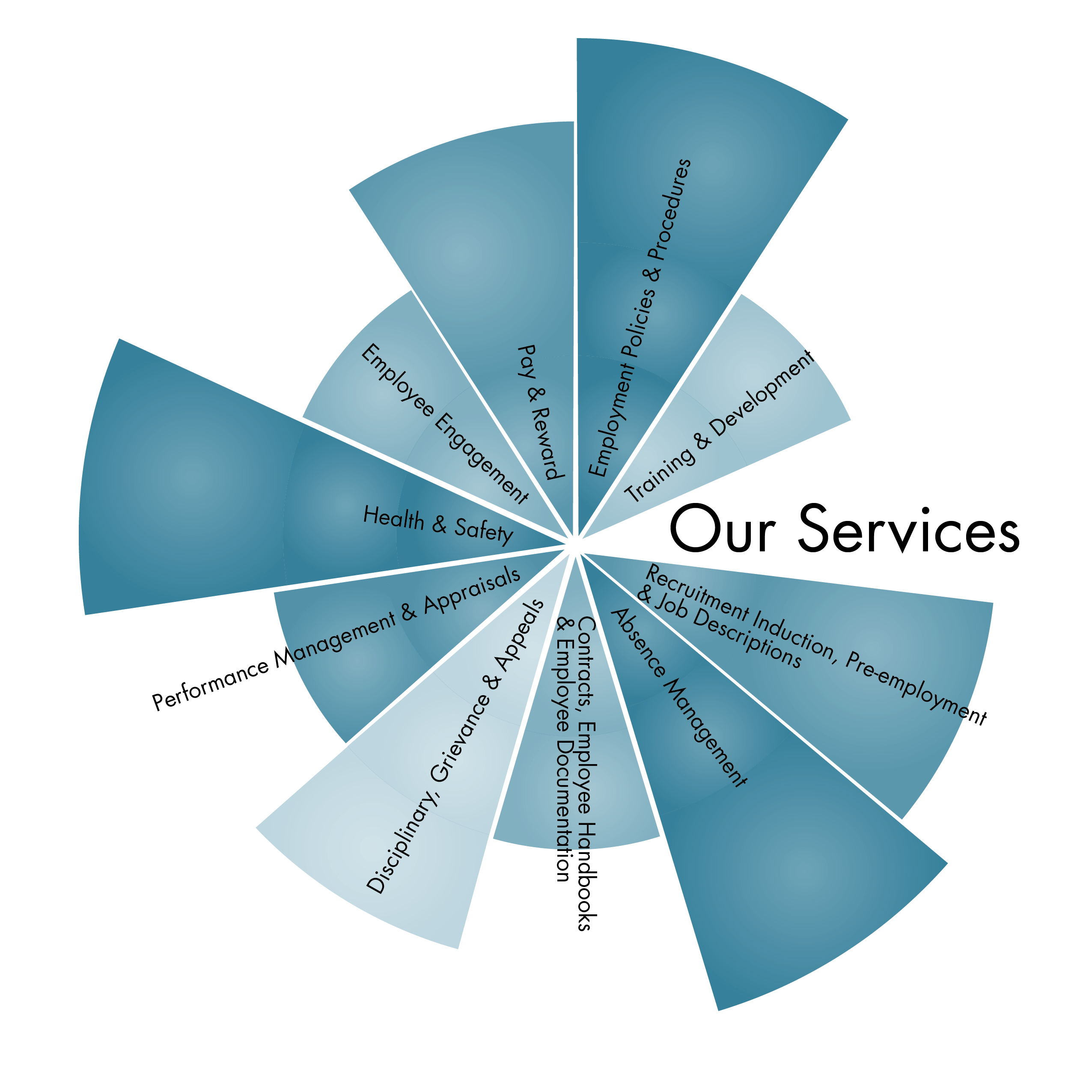 The full spectrum of HR services for your business is available from Black Dog HR Consultancy. Choose from an individual segment to a full wheel to be tailored to your business's needs
